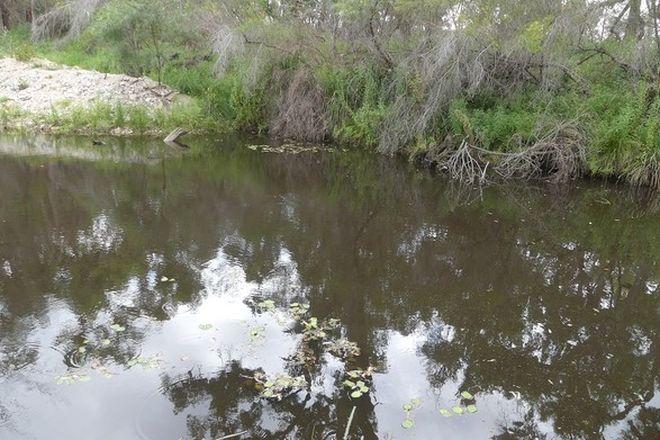 Picture of 254 Curtin Road, BALLANDEAN QLD 4382