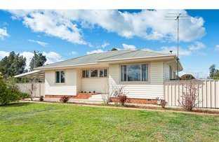 Picture of 1022 Calimo Street, North Albury NSW 2640