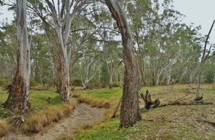 Picture of CA1 Graytown Rushworth Road, Graytown VIC 3608