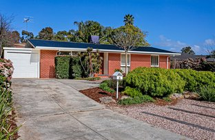 Picture of 6 Lisa Court, Paradise SA 5075
