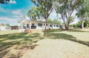 Picture of 19 Crane Street, Warialda NSW 2402