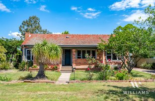 Picture of 13 Ada Street, Singleton NSW 2330