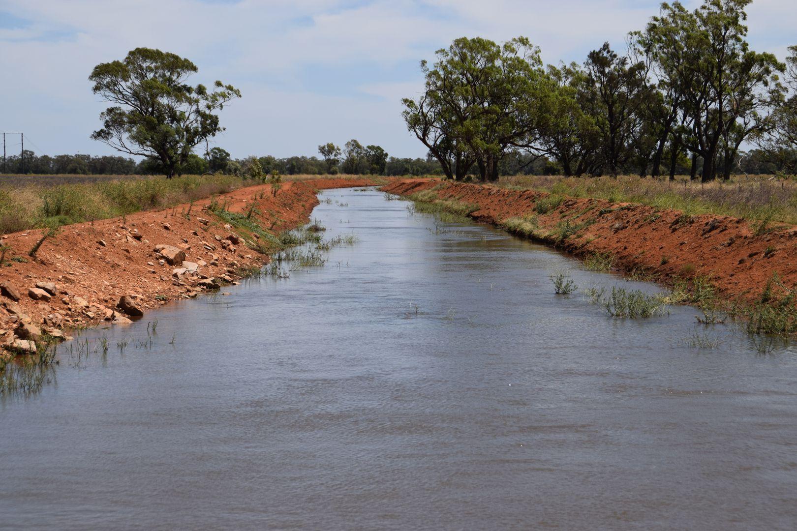'Wooringa' 535 Ceres Siding Road, Narromine NSW 2821, Image 1