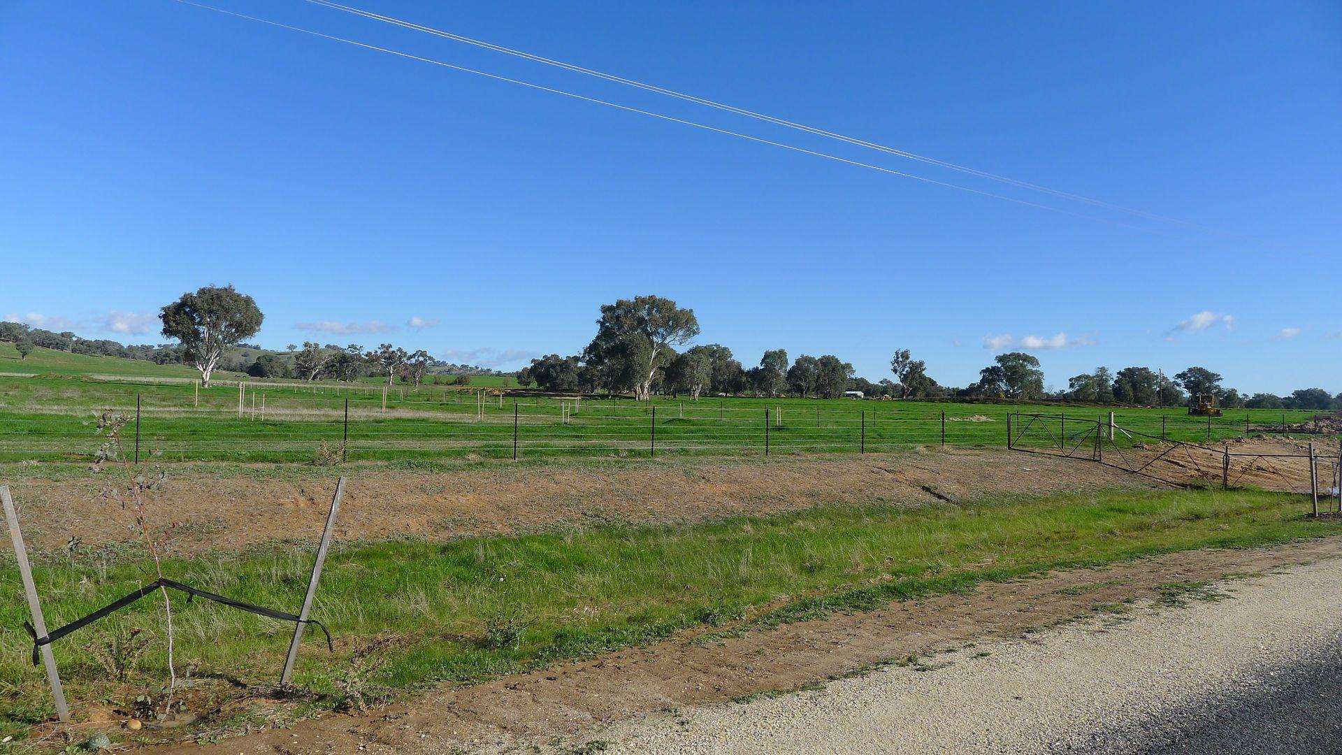 Glenholm Estate Rise, Jindera NSW 2642, Image 2