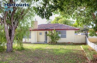 Picture of 11 Kestral Street, Withers WA 6230
