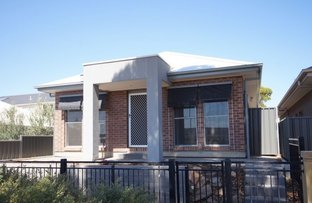 Picture of 5 Berry Lane, Blakeview SA 5114