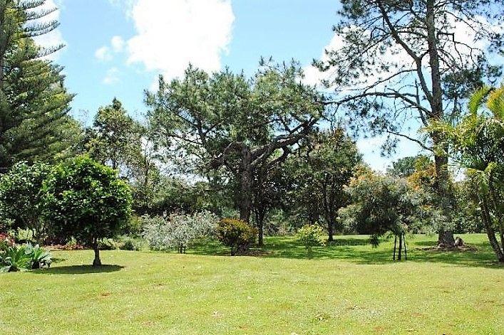 37 Jenyns Road, Tamborine Mountain QLD 4272, Image 2