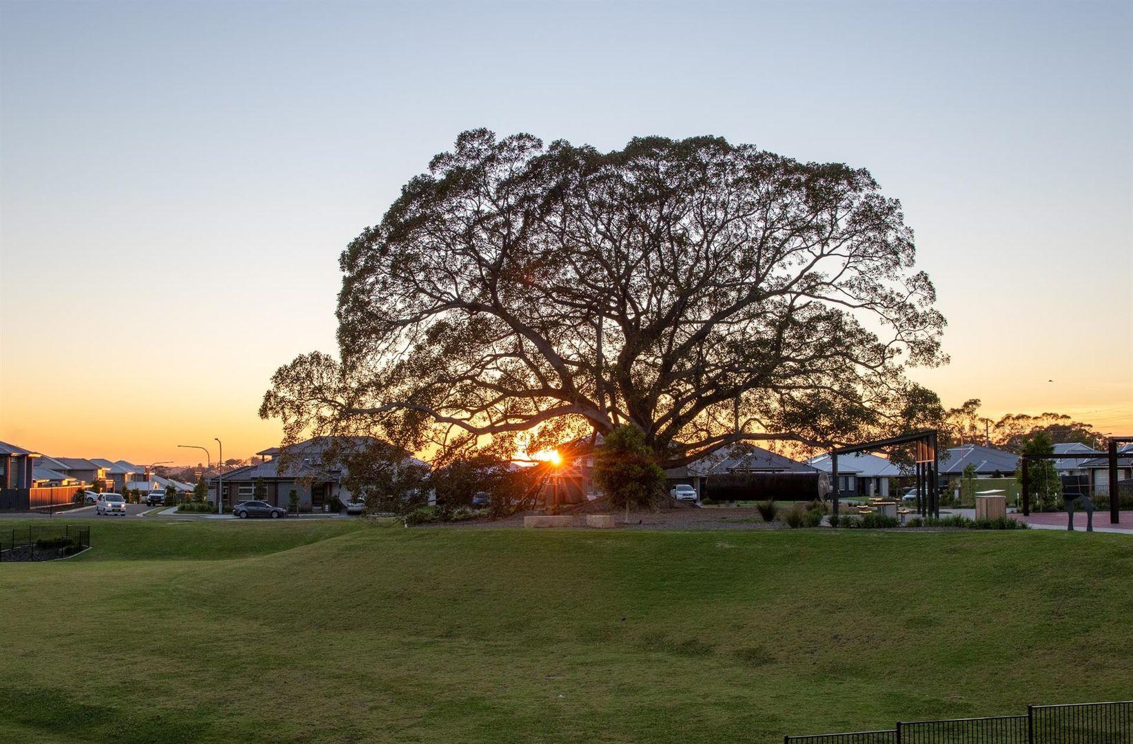 301 The Vale, Wongawilli NSW 2530, Image 2