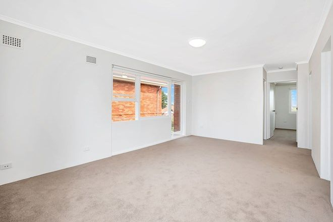 Picture of 5/24 Sturt Street, KINGSFORD NSW 2032