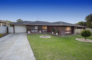 Picture of 8 Scales Way Spearwood, Spearwood WA 6163