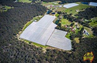 Picture of 154 Aberfoyle Road, Wedderburn NSW 2560