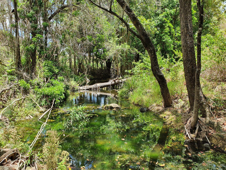 Lot 4 McFauls Road, Mount Martin QLD 4754, Image 1
