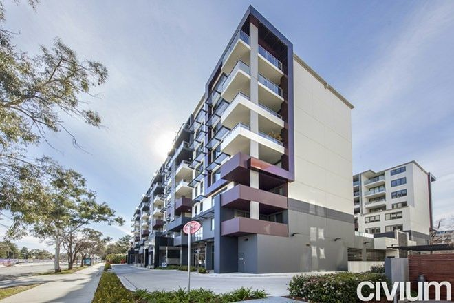 Picture of 201/102 Northbourne Avenue, BRADDON ACT 2612