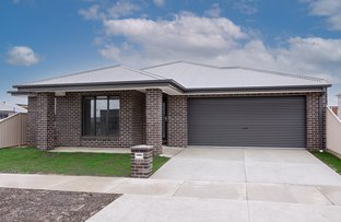 Picture of 38 Honour Avenue, Winter Valley VIC 3358