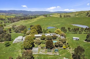 Picture of 501 Larritts  Lane, Glenburn VIC 3717