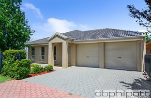 177 Folland  Ave, Lightsview SA 5085