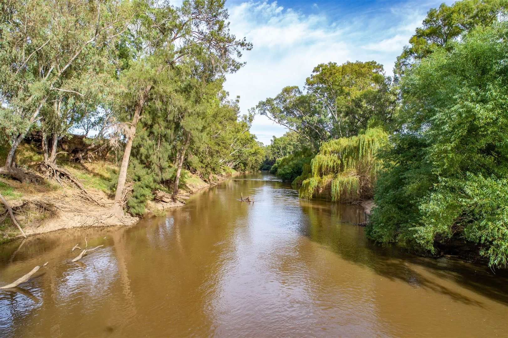 59 GRANTVILLE ROAD, Gooloogong NSW 2805, Image 1