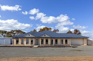 Picture of 71 Buckland Park Road, Two Wells SA 5501