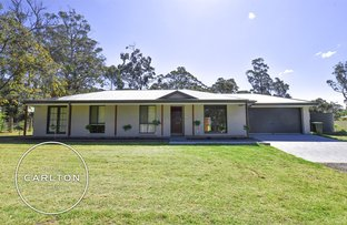 Picture of 10A Drapers Road, Willow Vale NSW 2575