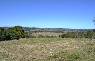61 Virtue Road, Eltham NSW 2480