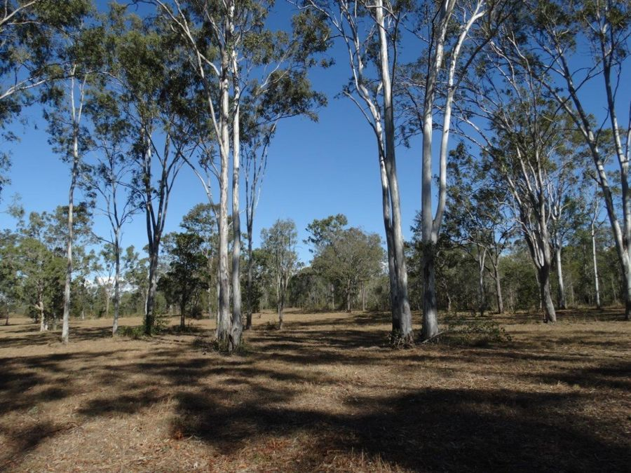 Lot 22 Taunton Road, Euleilah QLD 4674, Image 1