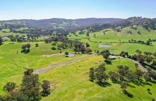 Picture of 'Yarallah Estate' Yarallah Crt, Splitters Creek NSW 2640
