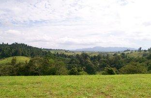 Picture of Lot 6 Rainforest Falls Road, Coorumba QLD 4860