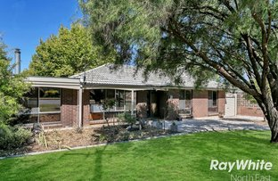 Picture of 12 Penelope Avenue, Valley View SA 5093