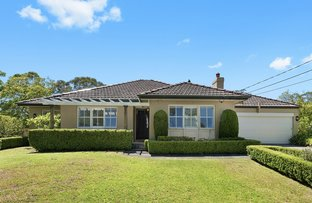 Picture of 19 Awatea Road, St Ives NSW 2075
