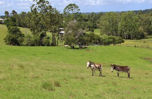 128 Curramore Road, Maleny QLD 4552