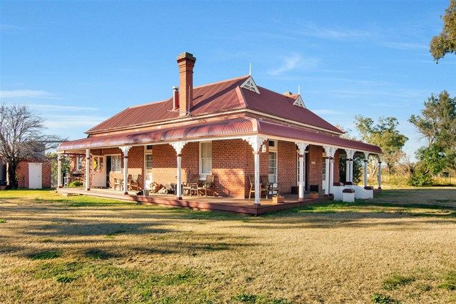 Picture of 776 Trevallyn Road, BARRABA NSW 2347