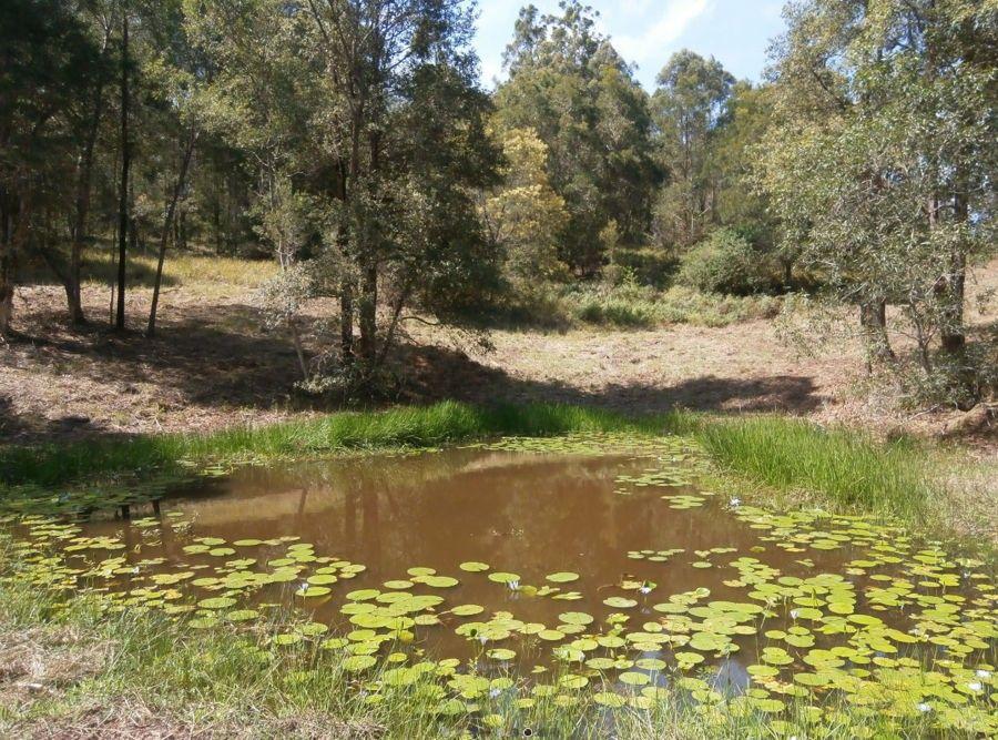 470 Candoormakh Creek Road, Nabiac NSW 2312, Image 2