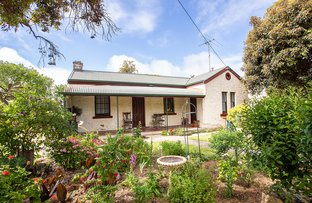 Picture of 8 Peake Crescent, Naracoorte SA 5271