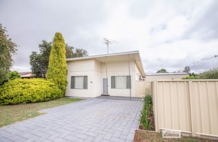 Picture of 31 FREELING STREET, Naracoorte SA 5271