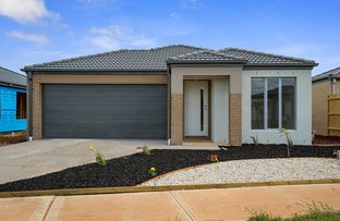 Picture of 11 Cotton Field Way, Brookfield VIC 3338