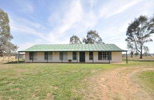Picture of 141 Molkentin Road, Jindera NSW 2642