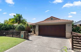 Picture of 8 Vivacity Drive, Upper Coomera QLD 4209
