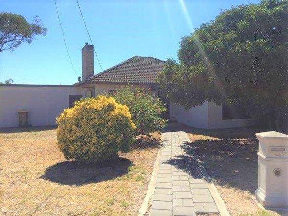 7 Lomman Avenue, Newton SA 5074, Image 0