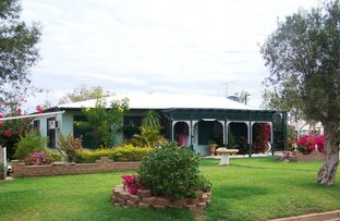 Picture of 42 Dagworth Street, Winton QLD 4735