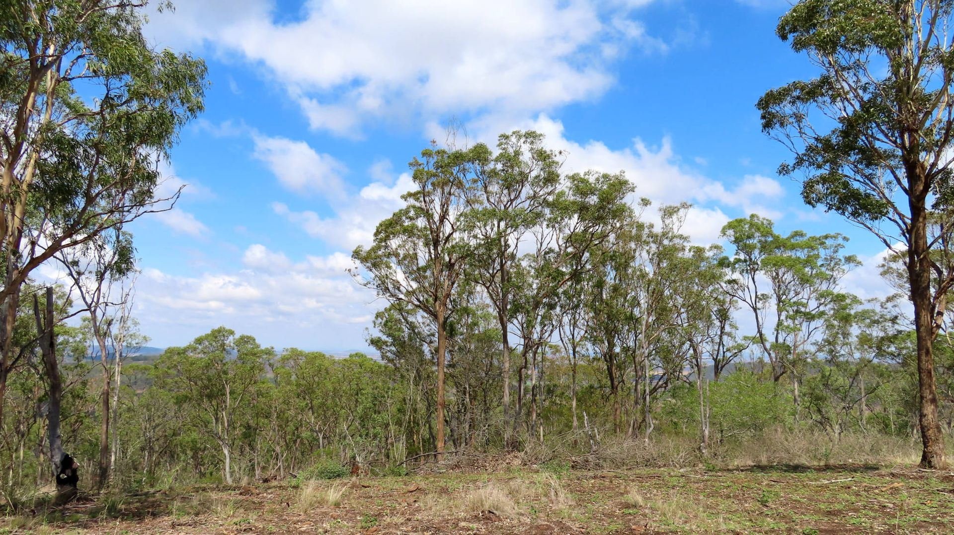 West Haldon QLD 4359, Image 0