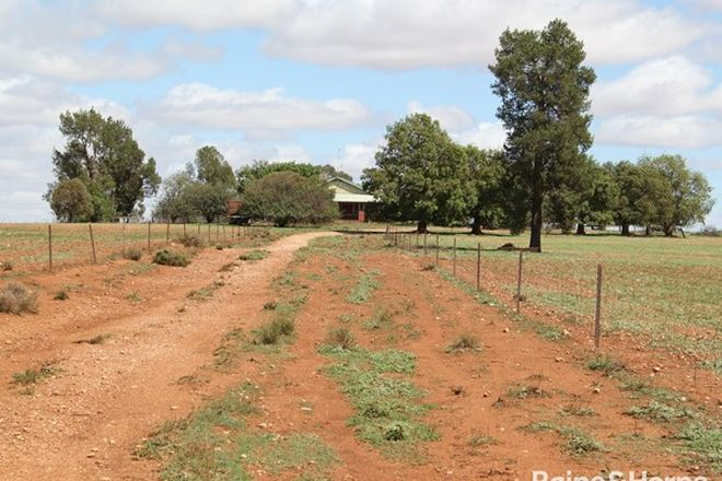 Picture of 2633 Newell Highway, PARKES NSW 2870