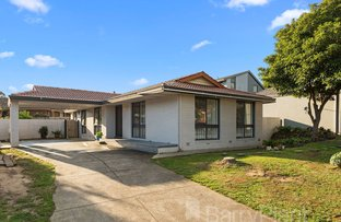 Picture of 74 Amesbury  Avenue, Wantirna VIC 3152