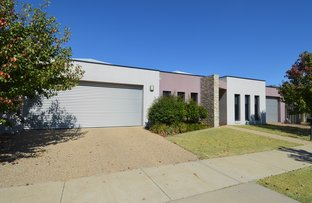 Picture of 23 James Street, Echuca VIC 3564