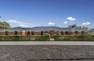 Picture of 25 Lower Beckhams Road, Maiden Gully VIC 3551