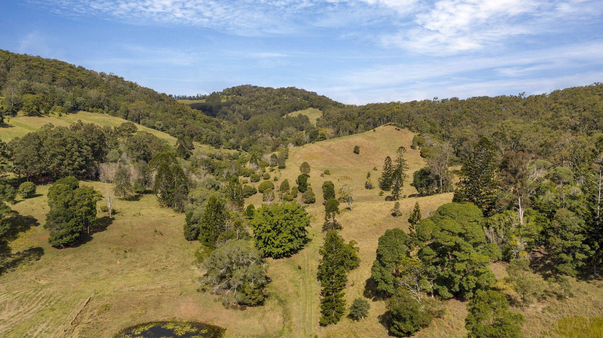 139 Upper Eel Creek Road, Langshaw QLD 4570, Image 1