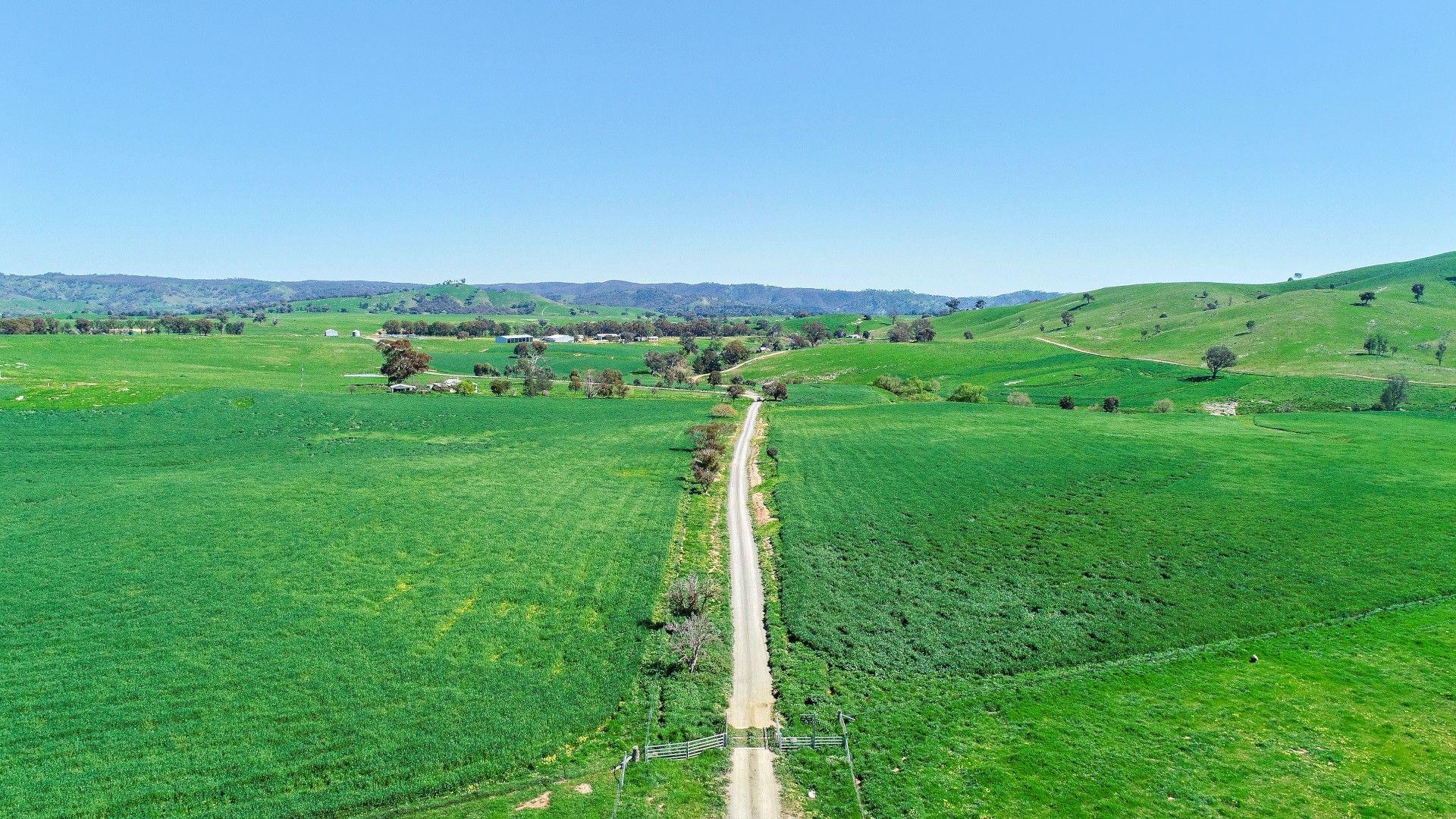 2755 Triamble Road, Mudgee NSW 2850, Image 2