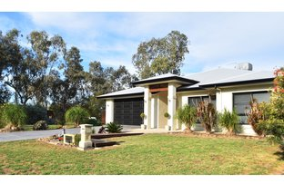 Picture of 1 Park Avenue, Goondiwindi QLD 4390