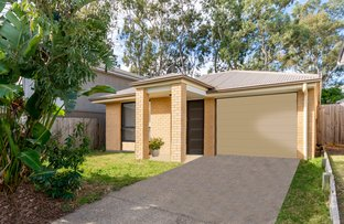 Picture of 22 Northmarque St, Carseldine QLD 4034