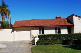 Picture of 17 Trident Terrace, Willetton WA 6155