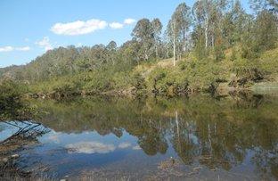 Lot 9,1534 Paddys Flat Rd, Tabulam NSW 2469